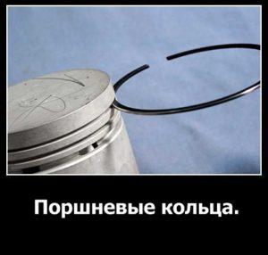 porshnevye-kolca