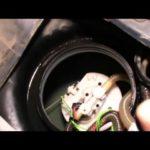 Как поменять топливный насос на форд эскорт
