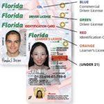 Как проверить мои водительские права во Флориде
