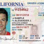 Как проверить статус водительских прав штата Теннесси