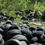Как избавиться от старых шин в Калифорнии