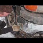 Как почистить хромированные бамперы